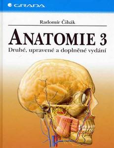 cihak-anatomie-3