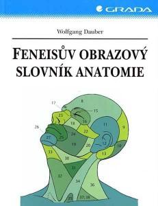 feneis-feneisuv-obrazovy-slovnik-anatomie