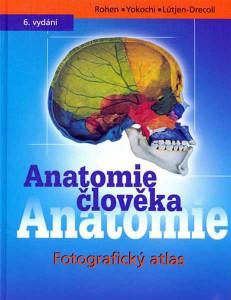 rohen-anatomie-cloveka